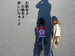 CIMG0458_20081122184459.jpg