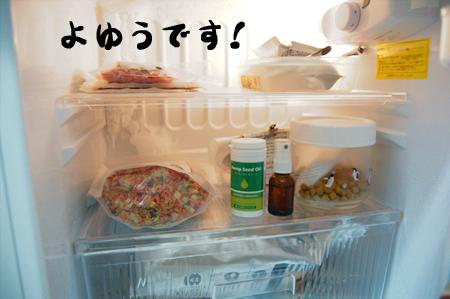 冷蔵庫1_20090205