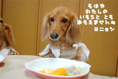 BD_mignon5_20090721.jpg