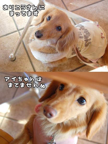 Cafe2_20090207.jpg