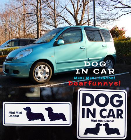 Car_20090110.jpg