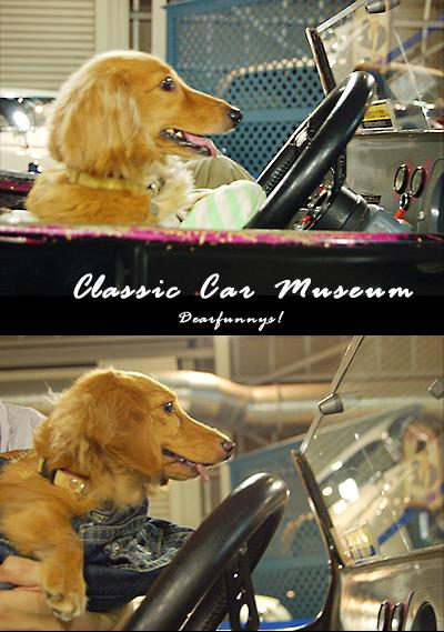 ClassicCar2_20090718.jpg