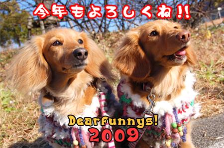 D-NewYear2_20080103.jpg