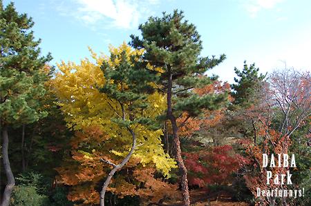 DAIBA-park2_20081129.jpg