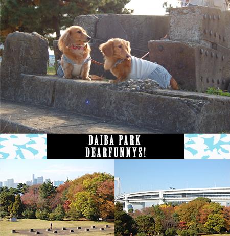 DAIBA-park3_20081129.jpg