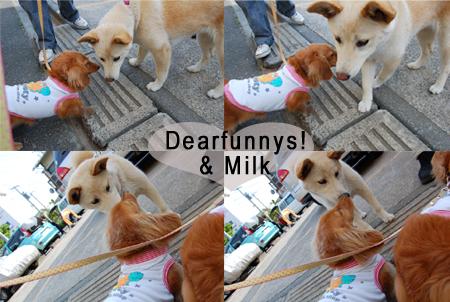 Dearfunnys1_20090518.jpg