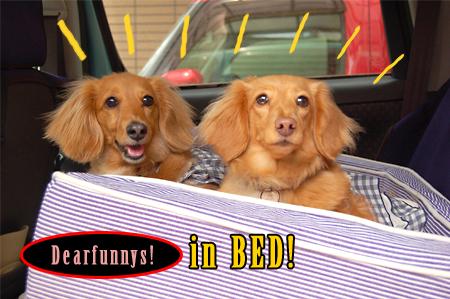 Dearfunnys1_20090524.jpg