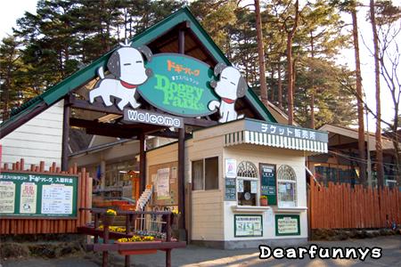 DoggyPark_20090410.jpg