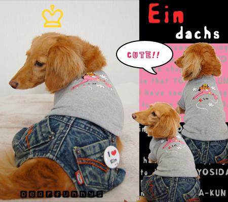 Ein-yosidakun_20090419.jpg