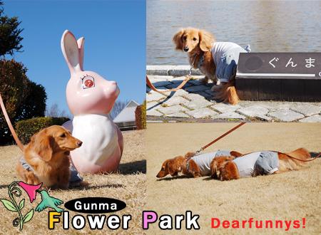 FlowerPark1_20090315.jpg