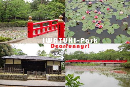 IWATUKI-P3_20090505.jpg