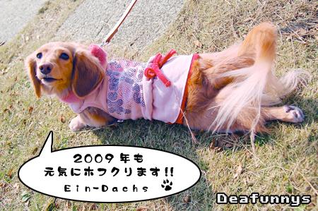 Kaihin-Park_ein1_20081214.jpg