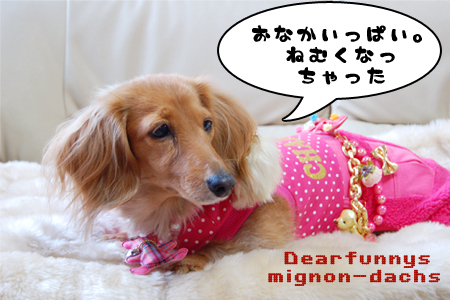 M-NewYear_20090103.jpg