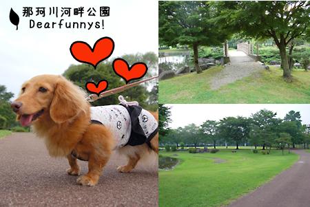 Park1_20090718.jpg