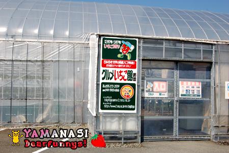 Strawberry1_20090410.jpg