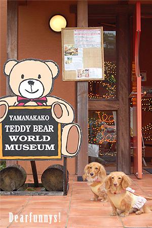 TeddyBearW1_20080822.jpg