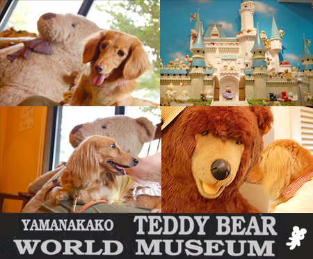 TeddyBearW2_20080822.jpg