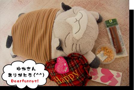 YUKA-SAN_20081229.jpg