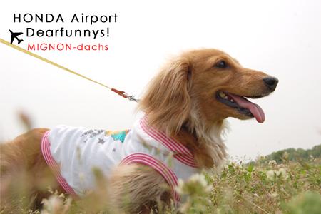 airport1-M_20090504.jpg
