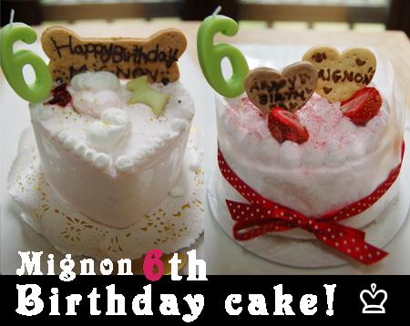 cake_20090721.jpg