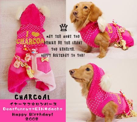 charcoal_20081229.jpg