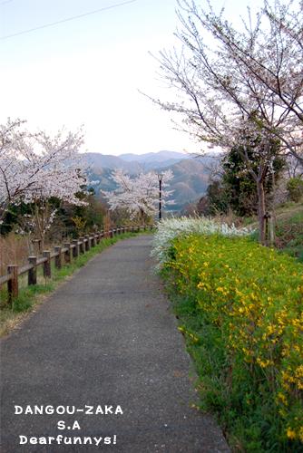 dangouzakaSA_20090410.jpg