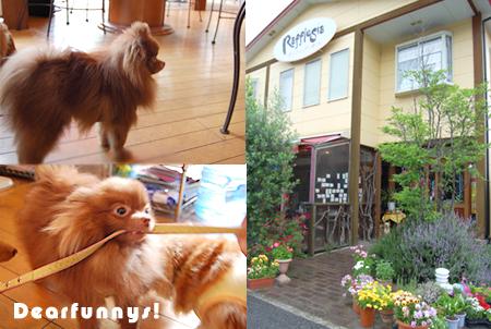 lunch2_20090505.jpg