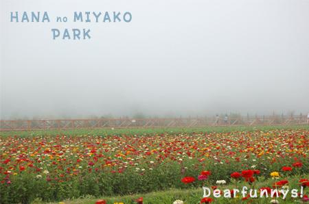 park7_20080822.jpg