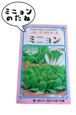 seed1_20080912.jpg