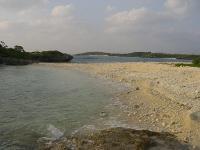 ターチビダビーチ2