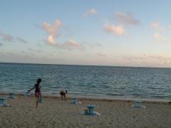 朝から新城海岸