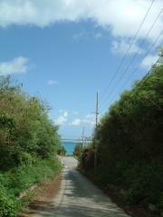来間島の道路