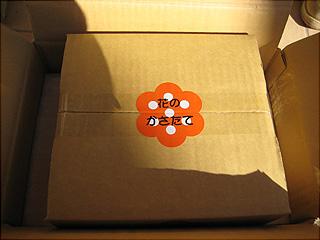 0117箱