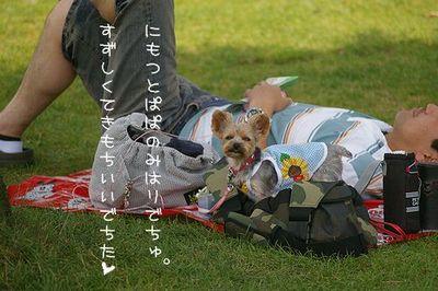 IMGP7381ブログ