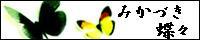 みかづき蝶々