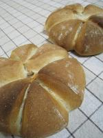 1228全粒分とはちみつのパン