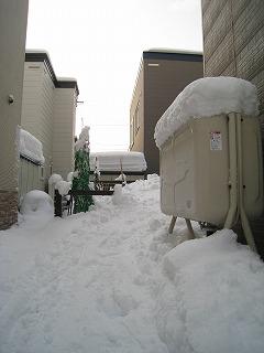 0122雪かき