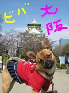大阪Lovers