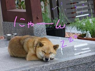 眠いでスン