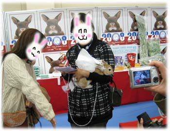 うさコレ20084