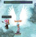 Lv95→96