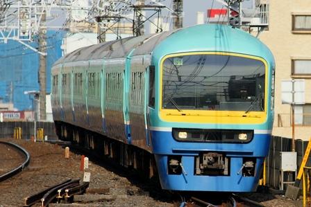 080302-ichikawa-nanohana-j.jpg