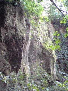 苔の洞門2009.2
