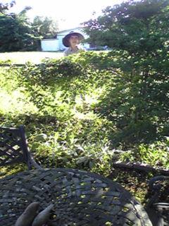 庭と母2009.