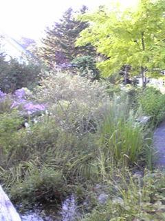 夢織の庭2009.