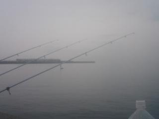 今津川釣り1