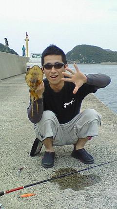 2009五島列島アオリイカ