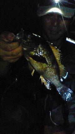 20090806柳井釣行3