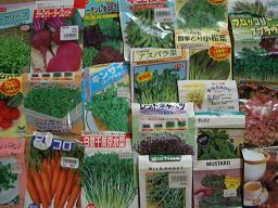 野菜&ハーブの種