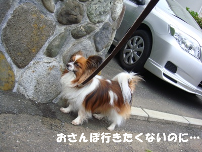 200516-02.png